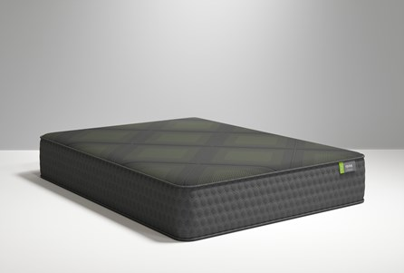 Display product reviews for R1 PLUS FIRM QUEEN MATTRESS
