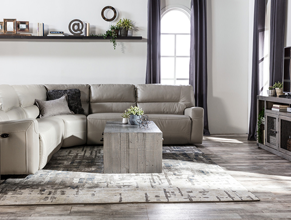 transitional Living room with Renaldo sofa
