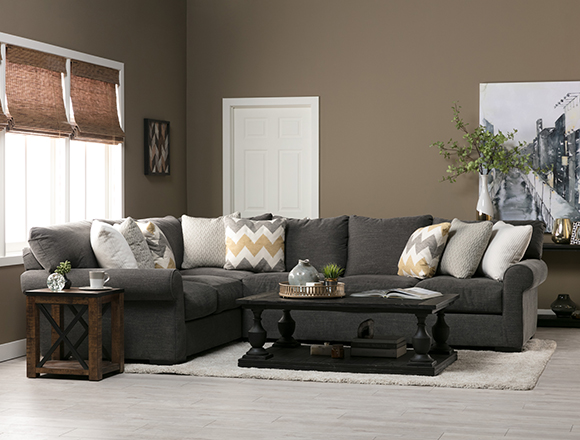 transitional Living room casual living plush