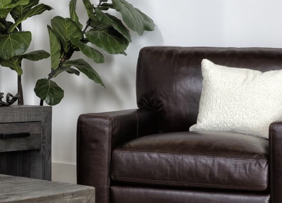brown leather chair for reading