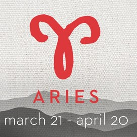 about aries decor