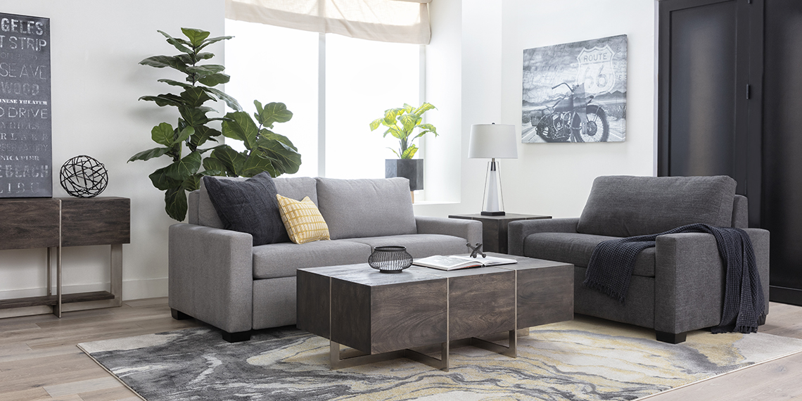 modern Living Room with Mackenzie Charcoal Twin Sofa Sleeper