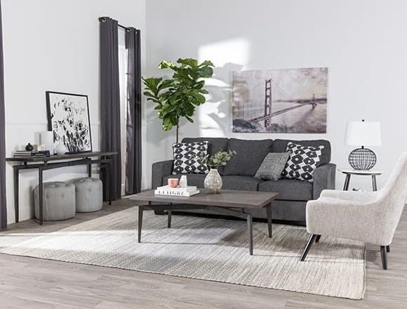 Modern Living Room with Turdur Sofa