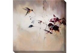 Picture-Hummingbird In Flight