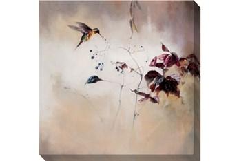 48X48 Hummingbird In Flight