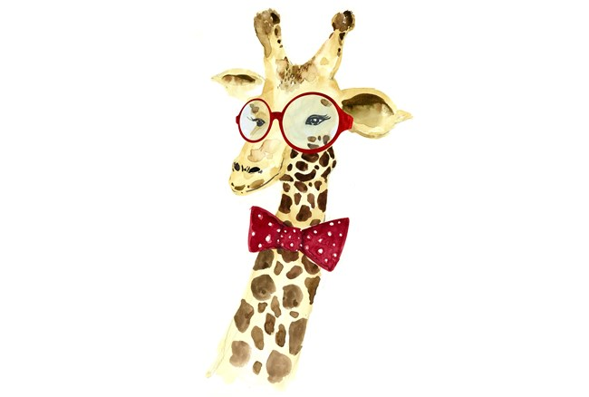 Picture-Giraffe In Spectacles - 360