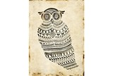 Picture-Owl Watch - Signature