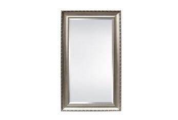 Leaner Mirror-Champagne Finish 51X87