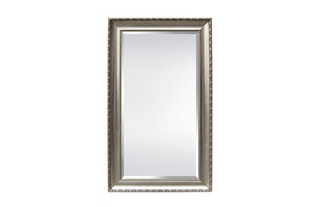 Leaner Mirror-Champagne Finish 51X87