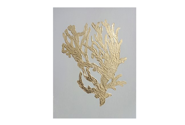 Picture-Gilded Corals Ii - 360