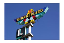 Picture-Thunderbird By Matthew Ehrmann