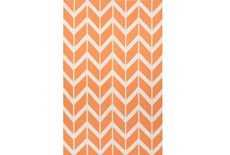 42X66 Rug-Azibo Orange Chevron