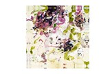 Picture-Abstract Orchid 43X43 - Signature