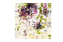 Picture-Abstract Orchid 43X43