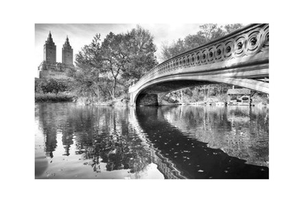 Picture-Central Park Bridge - Main