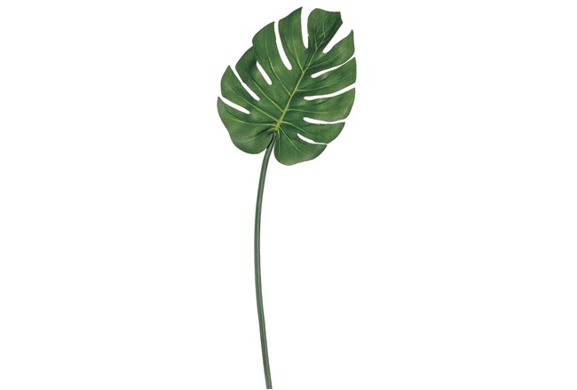 Garden-30 Inch Split Philo Leaf - 360