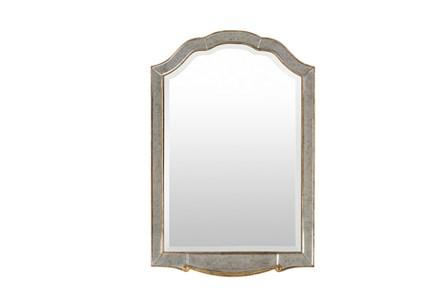 Mirror-Michelle Champagne 48X32