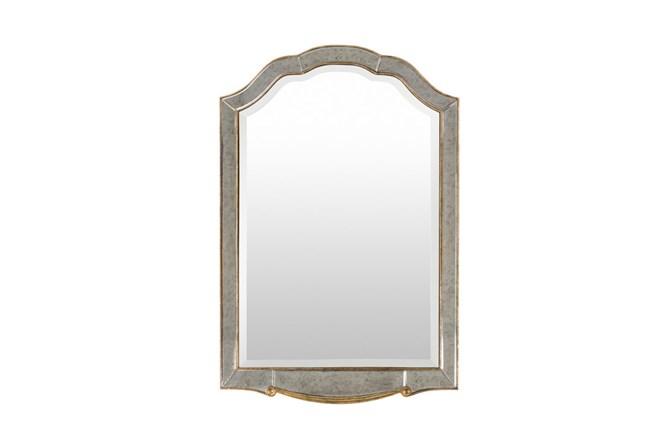 Mirror-Michelle Champagne 48X32 - 360