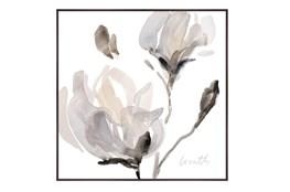 Picture-Magnolia