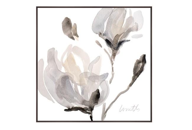 Picture-Magnolia - 360