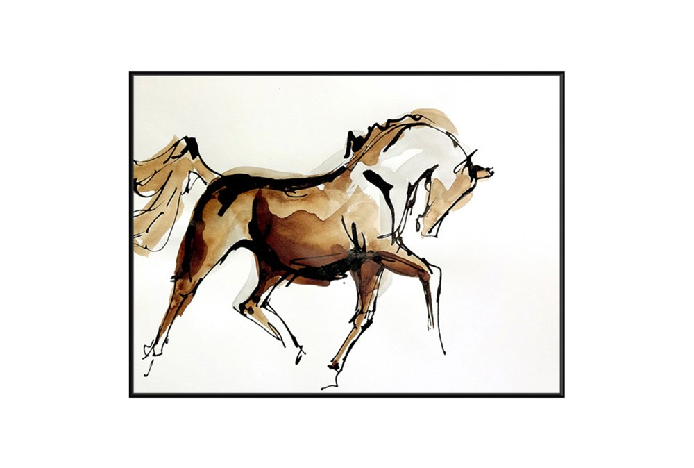Picture-Canter