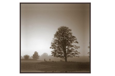 Picture-Foggy Morning - Main