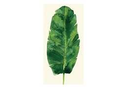 Picture-Green Leaf II