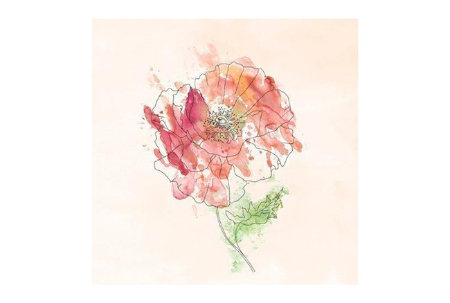 Picture-Pink Flower II - 360