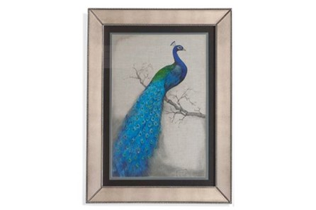 Picture-Mirror Framed Peacock I - Main