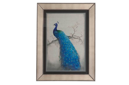 Picture-Mirror Framed Peacock II - Main