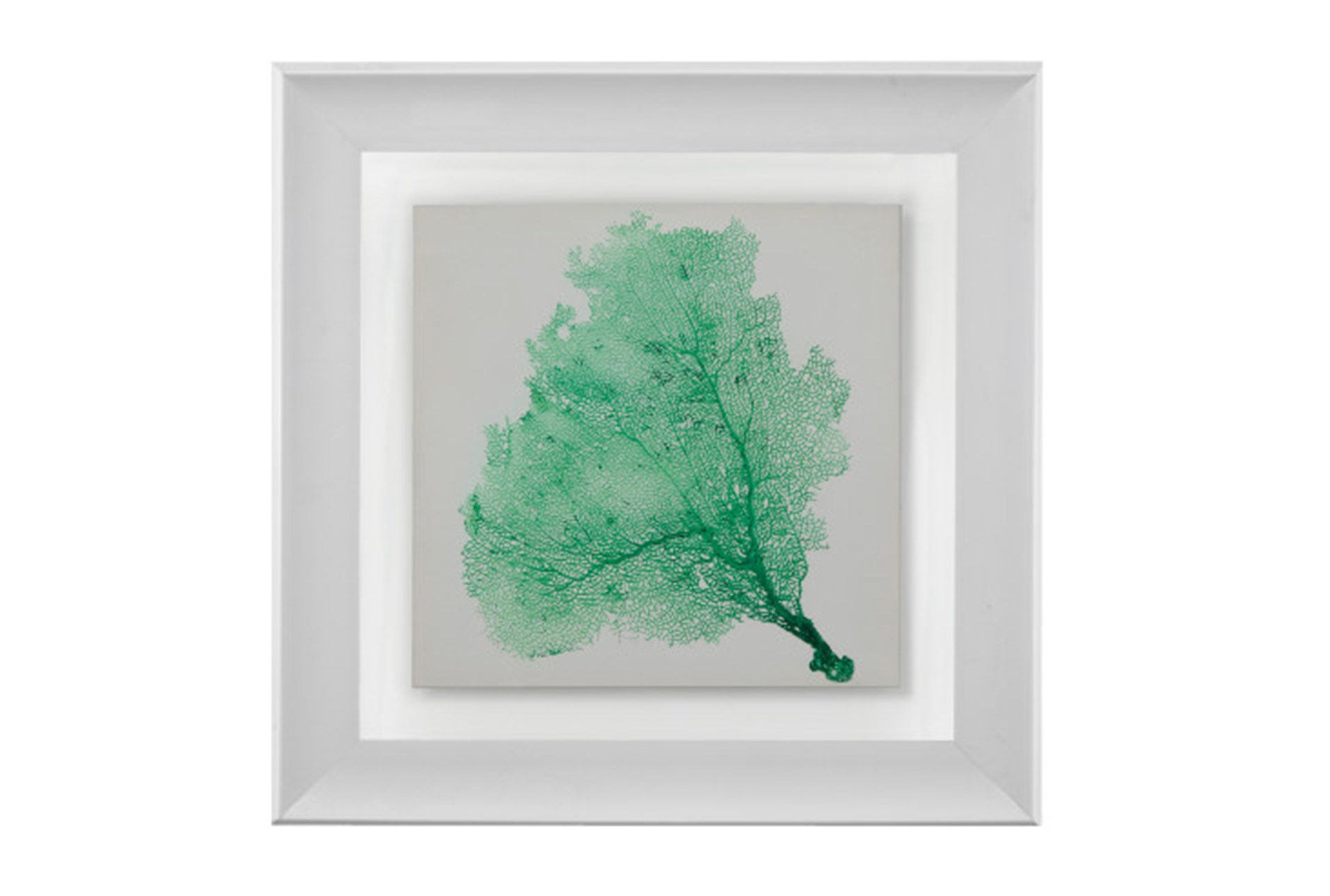 Picture Sea Fan Emerald Qty 1 Has Been Successfully Added To Your Cart