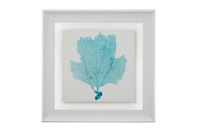 Picture-Sea Fan Aqua - 360