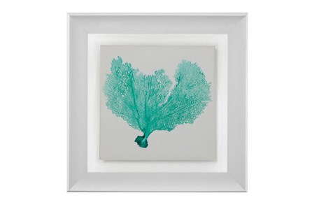 Picture-Sea Fan Turquoise - Main