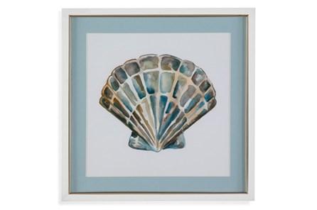 Picture-Aqua Shell Iii - Main