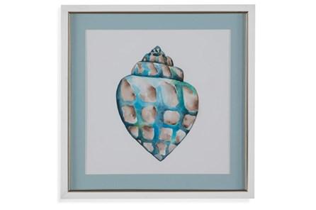 Picture-Aqua Shell Iv - Main