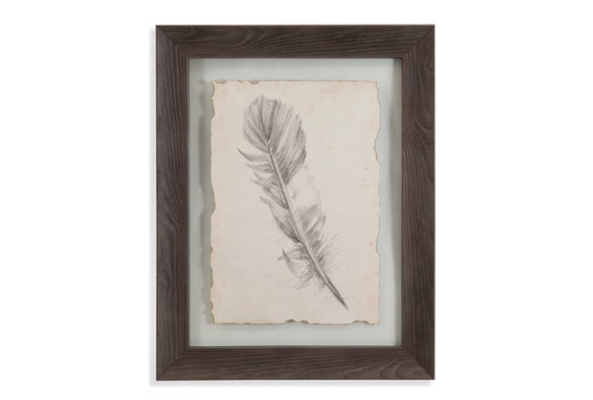 Picture-Floating Mount Feather I