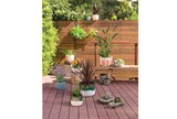 Outdoor-Driftwood Cement Bowl Small - Room