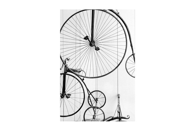 Picture-Vintage Bicycle - 360