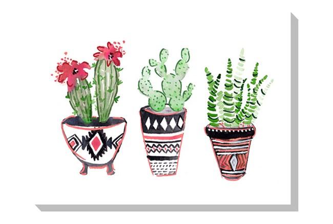 Picture-Cactus Trio - 360