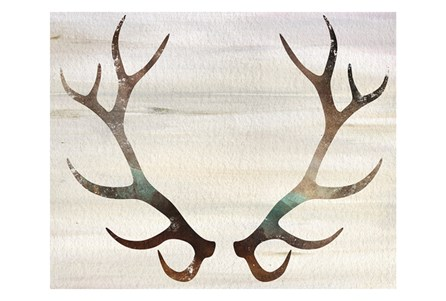 Picture-Antlers On Wood