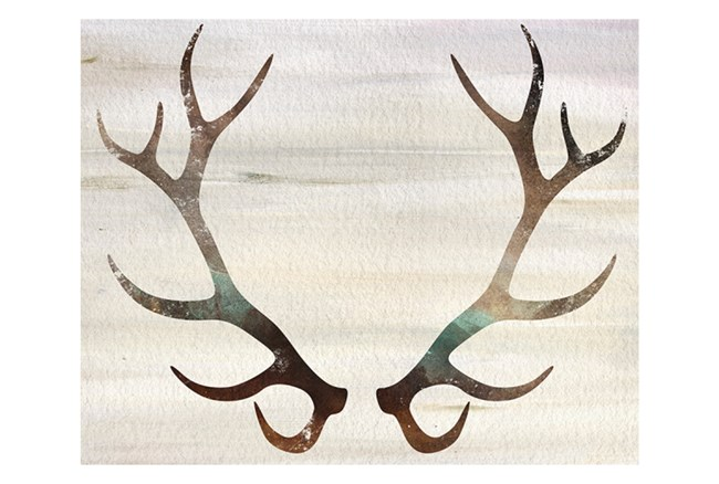 Picture-Antlers On Wood - 360