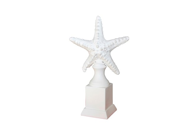 Star Fish On Stand - 360