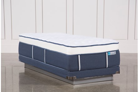 Blue Springs Firm Twin Xl Mattress W/Low Profile Foundation - Main