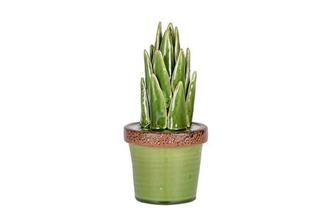 11 Inch Ceramic Aloe - 360