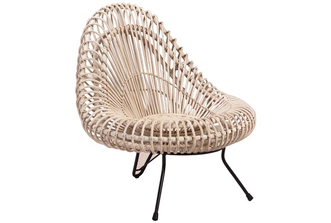 Rattan Iron Chair - 360