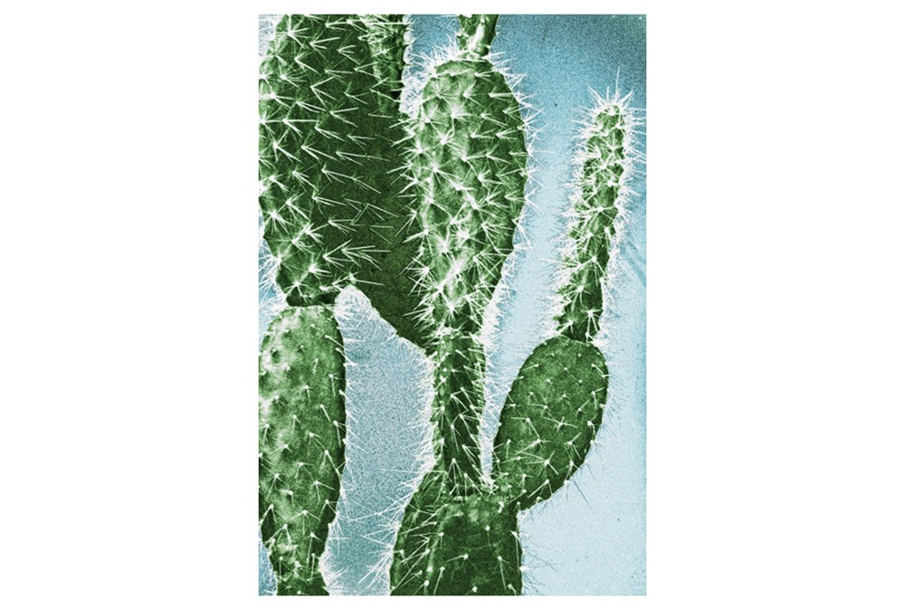 Picture-24X36 Prickly Pear Cactus I