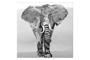 Picture-38X38 Elephant Gallery Wrap