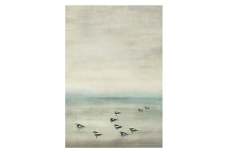 Picture-Birds On The Beach 24X35