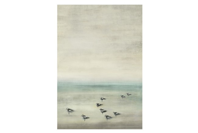 Picture-Birds On The Beach 24X35 - 360