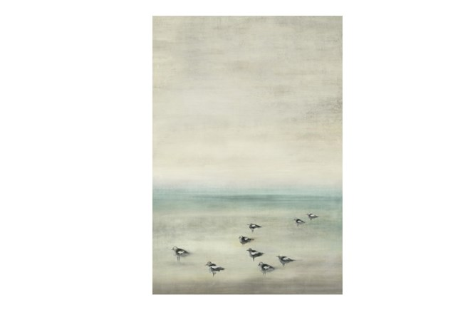 Picture-Birds On The Beach 30X44 - 360